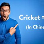Do You Know Translation Of Cricket In Chinese? 18+ Warning For Punjabis