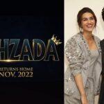 Kartik Aaryan & Kriti Sanon To Collaborate Again With Upcoming Film 'Shehzada'. Release Date Inside